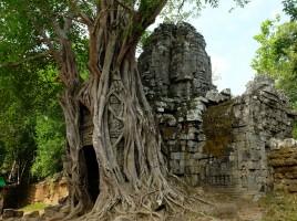 Quand y en p'us, y en a Angkor
